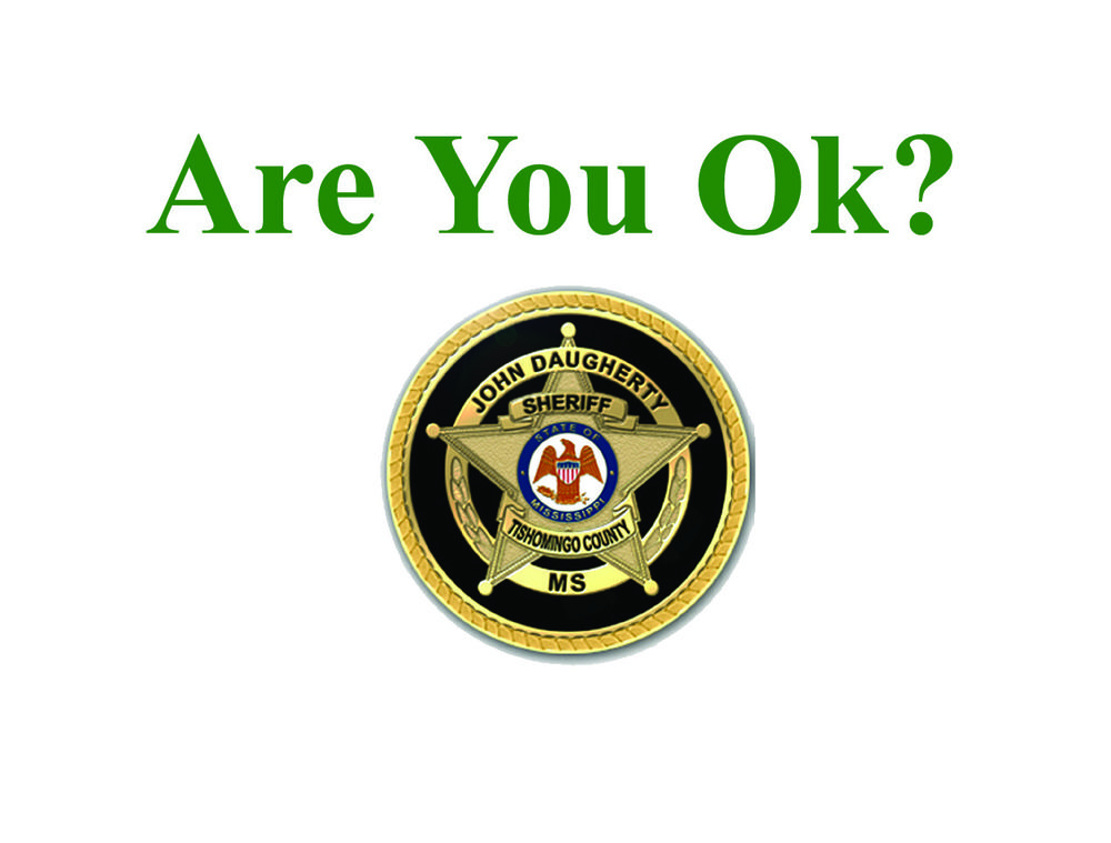 Are You Ok Banner 2.jpg
